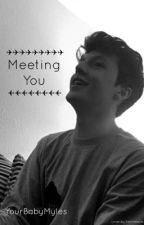 Meeting You (Myles Parrish Love Story) by YourBabyMyles