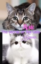 The secret of the Cats 1 (FINISHED) by tinypotatoz74