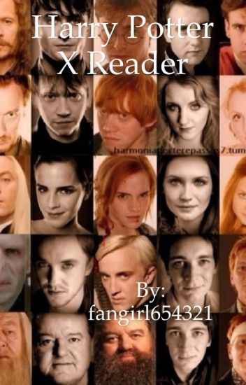 Harry Potter x Reader *Request Closed For Now*
