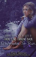 121 Weeks To Run by ShadowNinja21
