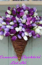 Cennetin Çiçekleri Ltd.Şti - Tek Bölüm by qsawe-AsumanBrklce
