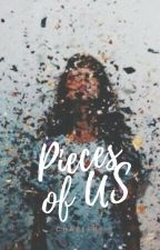 Pieces of Us [Completed ✔] by midnightpainter