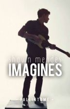 Shawn Mendes Imagines by fallintome