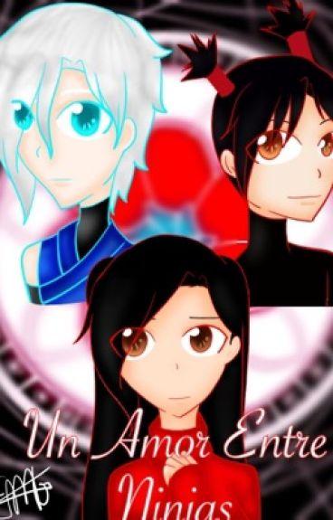 Amor entre ninjas (Pucca y Garu)