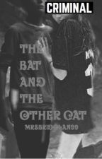 The Bat and the other Cat||Bruce Wayne|| by MrsBriDolan99