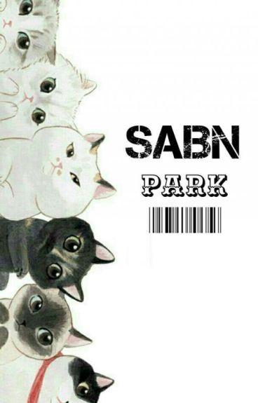 [ C ] SABN [ PJM ]