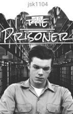 The Prisoner | Gallavich [wird überarbeitet] by rewiskaka