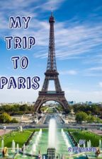 The trip to paris by miniongirl223