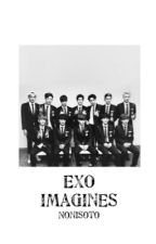 EXO IMAGINES by nonisoto