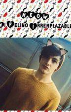 Meow Mi Felino Irremplazable - (Andrew Larrañaga) by yosegomexs