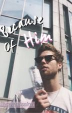 Because Of Him -Luke.H- by agblissing