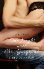 One Night With Mr Gorgeous (Published under PRECIOUS HEARTS ROMANCES) by LaTigresaPHR