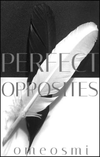 Perfect Opposites (boyxboy/twincest) - DISCONTINUED