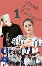 Dikkat! EXO Çıkabilir! by layunikorn