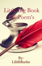 Little Big Book of Poems by LilithBurke