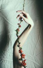 ϟFrasesϟ by xperfectstormsx