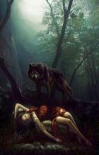 Le hurlement d'un loup by ilyxrf