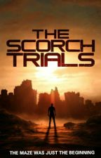 My Keeper/ The Scorch Trials/ Dylan O'Brien/ Mongolian by FinalSonata