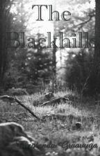 The blackhills by tinotendststsyi