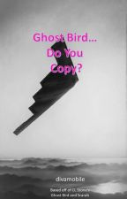 Ghost Bird... Do You Copy? by divamobile
