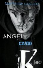 Ángel Caído © [BL] by matt0727