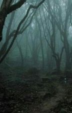 غابة الريف by Krooom9