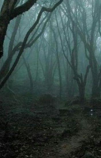 الغابة الريفية