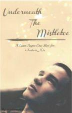 Underneath the Mistletoe (A Liam Payne One Shot for xAmberr_1Dx) by gigglebox1025