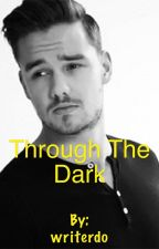 Through The Dark (Liam Payne) by writerdo