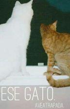 [Ese gato] by AveAtrapada