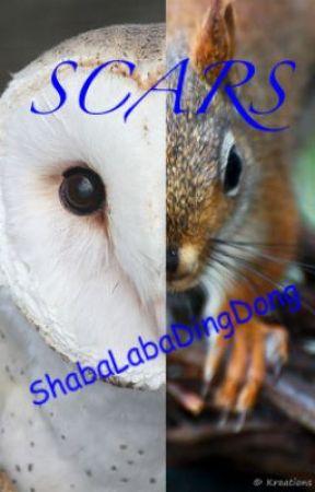 Scars by ShabaLabaDingDong