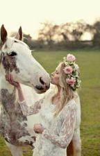 Lásku hledej u koní :3 by Saruskaa_