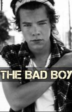 The Bad Boy // l.s (Slow Updates) by autumnnn____