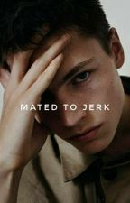 Mated To A Jerk // EDITING by ranchchips
