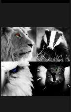 Harry Potter a nová rodina by VendySev