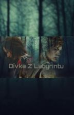 Dívka z Labyrintu (ff Newt, TMR) by FialovJadinka