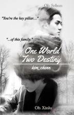 One World, Two Destiny [Malay Fanfic] ✔️ by kim_chenn