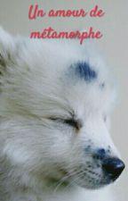 Un amour de métamorphe by CoralieSoustellePage