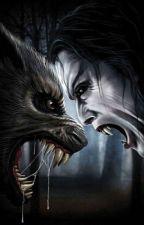 vampire vs wolves by lovekyla1