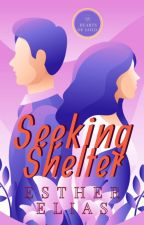 Seeking Shelter [A Hearts of Gold Novella] by HaddieHarper