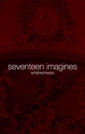 seventeen imagines by whatwonwoo