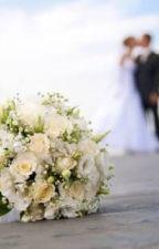 O Casamento by larescardoso