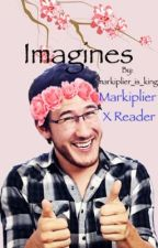 Markiplier X Reader Imagines by Cwoods1378