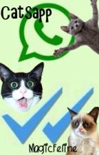 Catsapp: En Un Grupo Salvaje (Warrior Cats Whatsapp) #Wattys2016 by MagicFeline