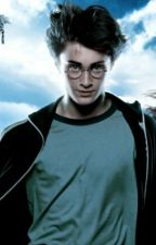 Harry Potter y el Prisionero de Azkaban by mattymari1004