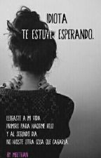 Idiota, Te Estuve Esperando. by Meiethan