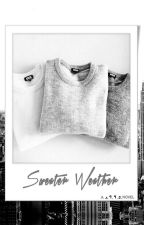 Sweater Weather - A 1995 Novel by moisafangirl