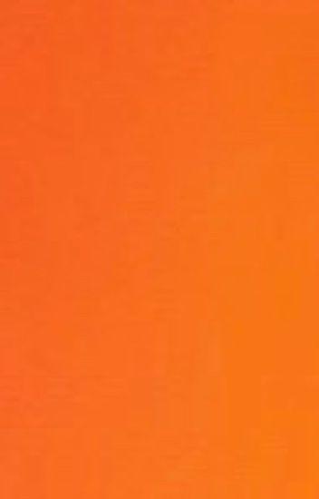 Eevee [Ash Ketchum y tú] «PAUSADA/EN EDICIÓN» (lectora)