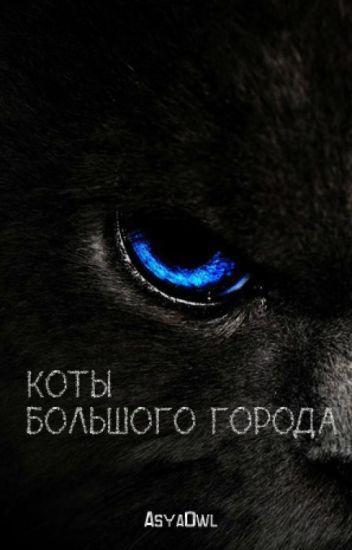Коты большого города