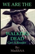 WE ARE THE WALKING DEAD [CARL X READER] by MaddiAA